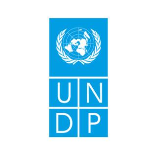 https://mustafaev.com.ua/wp-content/uploads/2018/08/UNDP-320x318.png
